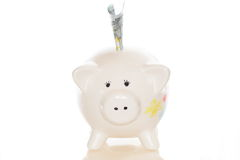 Small piggy bank Stock Image