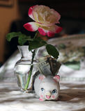 Small piggy bank with twenty dollars and a beautiful rose in the background Royalty Free Stock Photography