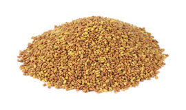 Small pile of alfalfa seeds Stock Image