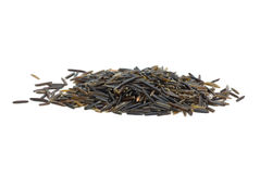 Small pile of black wild rice Stock Images