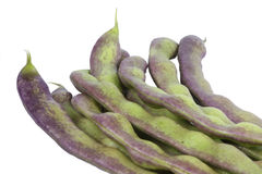 Small pile of green bean pods Stock Images