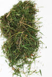 Small pile of green grass Royalty Free Stock Photos