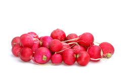Small pile of red ripe garden radish stock photography