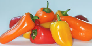 A Small Pile of Sweet Mini Peppers Stock Photography