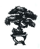 Small pine bonsai in the bowl. Illustration, black and white drawing of a marker, east of bonsai Royalty Free Stock Image