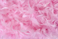 Small pink feathers in pile | Texture Stock Photo