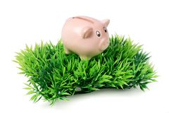 Small pink piggy bank on green plastic grass Stock Images