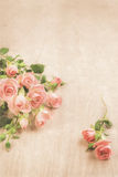 Small pink roses on wood, st. Valentine background, text space Stock Photos