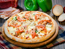 Small pizza with tomatoes and cheese 2. Small pizza with tomatoes and cheese on the table Stock Photography