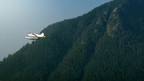 Small Plane Flies Past Forest Mountainside stock footage