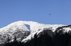 Small plane over Mt. Ripinsky Stock Image