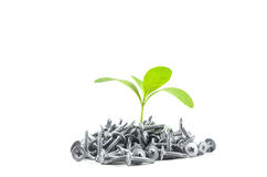 Small plant. And screw,Think Differently Royalty Free Stock Images