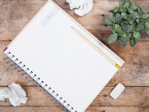 Small plant , notepad and crumpled paper Stock Image
