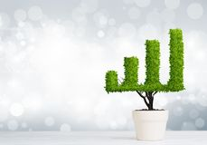 Concept of investment income and growth with tree in pot. Small plant in pot shaped like growing graph Royalty Free Stock Photography