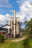 Small plant among the tropical nature. Jamaica.industrial landscape in a sunny day Stock Image