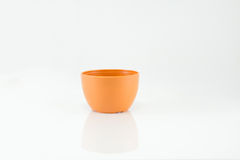 Small plastic potted plants on white background.  Stock Photos