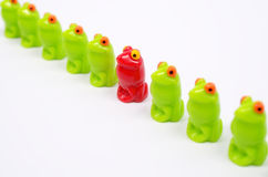 Small plastic toy frogs. Line of green toy frogs. Among them, one red frog. Close up view. Different from the others. At home among strangers. Concept of Royalty Free Stock Photos