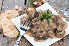 Small Plate with Cream Mushrooms Stock Photography
