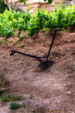 Small plow in a vineyard Royalty Free Stock Photography