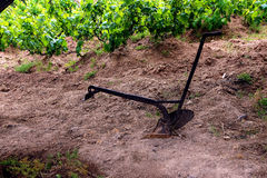 Small plow in a vineyard Stock Photo