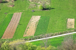 Small plowed fields Royalty Free Stock Photography