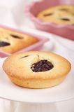 Small plum cake Stock Images
