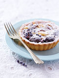 Small Plum Tart on a Plate Stock Image