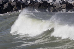 Small plunging breaker wave Stock Image