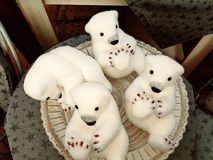 Small polar bears Royalty Free Stock Photo