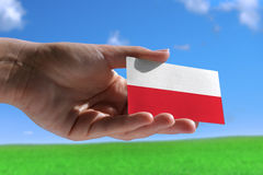 Small Polish flag Stock Images