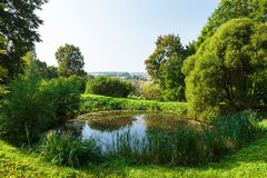 Small pond Stock Images
