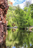 Small pond at Allens Bend trail at Sedona Stock Image