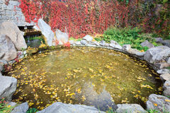 Small pond in autumn city park Stock Photography