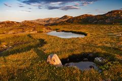 Small pond behind polar circle. Royalty Free Stock Photos