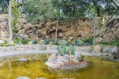 Small pond in Chapultepec Castle Royalty Free Stock Photos
