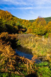 Small pond at colorful autumn scene with forest at rolling hills of Zeljin mountain Royalty Free Stock Photo