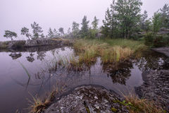 Small pond covered by fog Stock Image