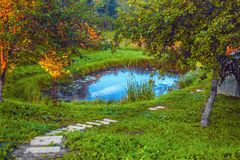 A small pond on home site and steps. Small pond on the home plot and steps stock images
