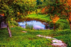 A small pond on home site and steps. Morning landscape. Small pond on the home plot and steps. Morning landscape royalty free stock photos