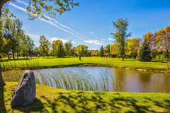 Free Small Pond Is Surrounded By Reeds Stock Photo - 79425730