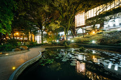Small pond and modern buildings at night, from Hong Kong Univers Royalty Free Stock Photos
