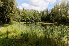 Small pond. Near Moscow suburbs, Clouds, field and lake Stock Photo
