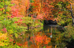Small pond in New England. In autumn time Stock Photography