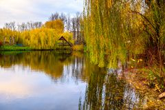 Small pond in a park Royalty Free Stock Images