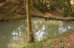 Small pond in the Pruhonice castle park Stock Photography