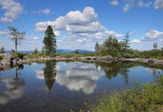 Small pond on Särkitunturi in Finnish Lapland. Small pond on Sarkitunturi fell top reflects the blue sky and white clouds stock images