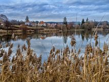 Small pond in South Moravia. Late autumn at a small pond in South Moravia, Czech Republic Stock Image