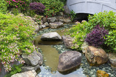 Small pond Royalty Free Stock Images