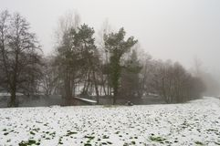 Small pond under the snow and mist in the province of Luxembourg Royalty Free Stock Photography
