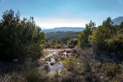 Small pond up in the mountains. Southern France. View with vineyards, forest and mountain Sainte Baume in background. Puyloubier, Provence, Southern France stock photography